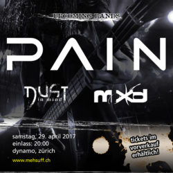 Pain - Dynamo Zürich 2017 (Flyer)