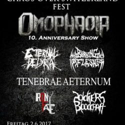 Chaos Over Switzerland Fest 2017 (E-Flyer)