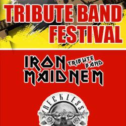 Pub-Festival Wetzikon - Tribute Bands 2017 (Flyer)